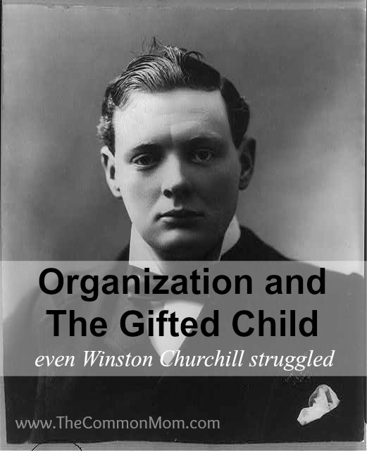 Organization and the gifted child